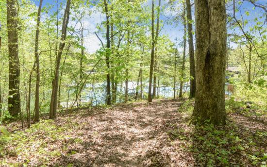 B3-Lake View